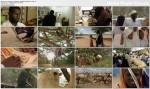 Karawana z ksi±¿kami Wielb³±dzia biblioteka w Kenii / Caravan of the Books (2010) PL.TVRip.XviD / Lektor PL